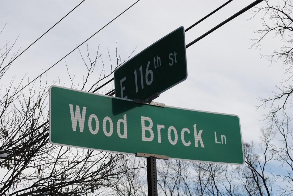 Woodbrook Lane