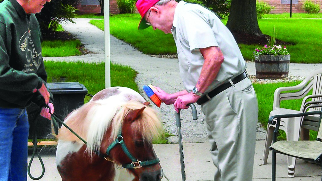 Dick Taylor, Carmel ManorCare resident, interacts with a mini-horse during a visit on June 3. (Submitted photo)