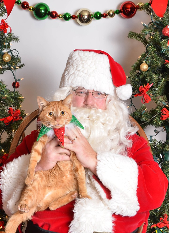 Pets will have the opportunity to meet Santa and get a photo with him at WhiskerFest. (Submitted photo)