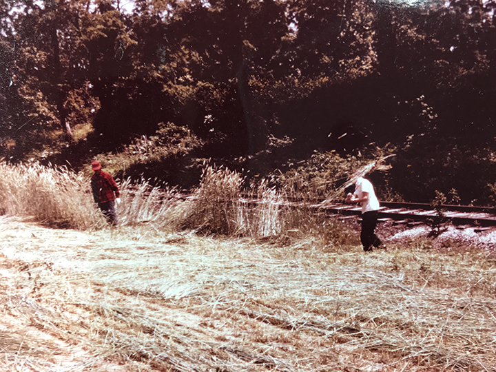 Volunteers clear brush from the cemetery at the site of the old Midland Railroad. (Submitted photo)
