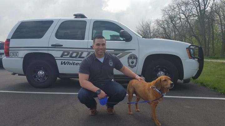 Whitestown Police Dept. Officer John Jurkash adopted a dog he helped rescue from being abandoned in a dumpster in March. (Submitted photo)