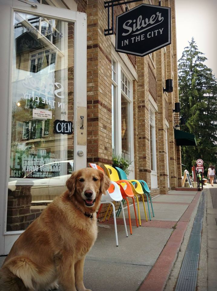 Employee SarahKate Chamness' dog is a Golden retriever named Bea Arthur and acts as the mascot for Silver in the City. (Submitted photo)
