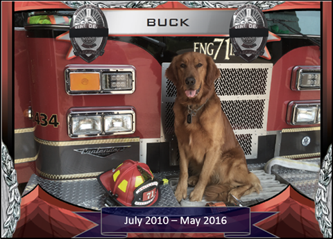 Buck passed away after a month-long battle with cancer. (Submitted photo)