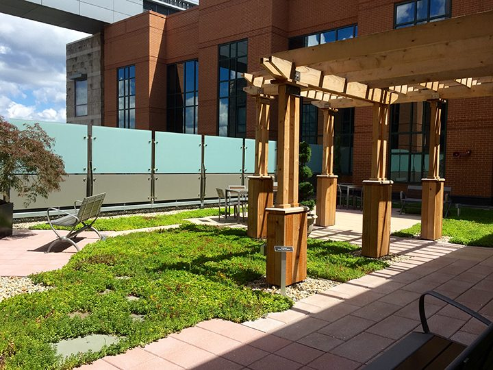The garden at IU North Health Hospital. (Submitted photo)
