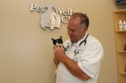 CIW-COVER-springmill pet wellness clinic06