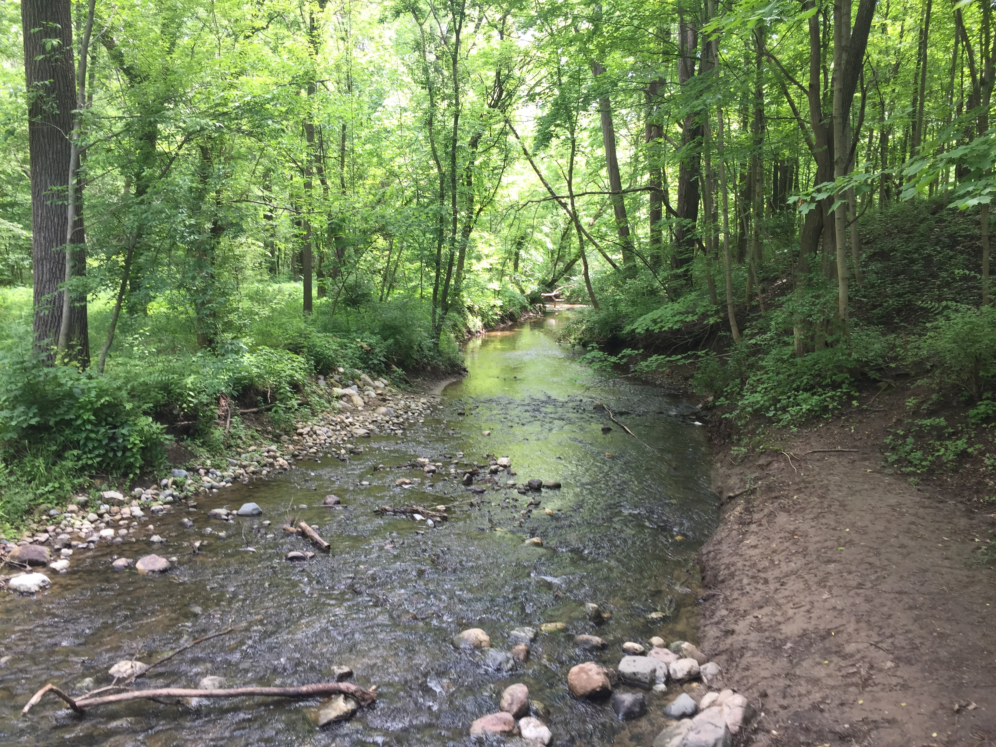 The trails inside Cool Creek Park make for a nice nearby getaway.